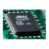 IP SERVO MOTOR Cores for APA Actel